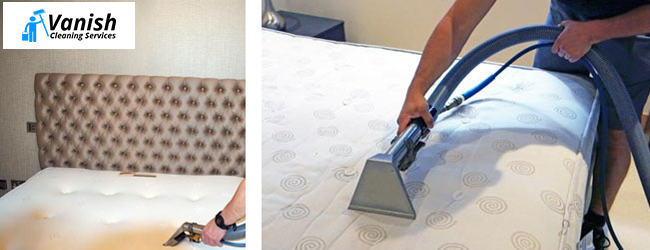 Professional Mattress Cleaner Palen Creek