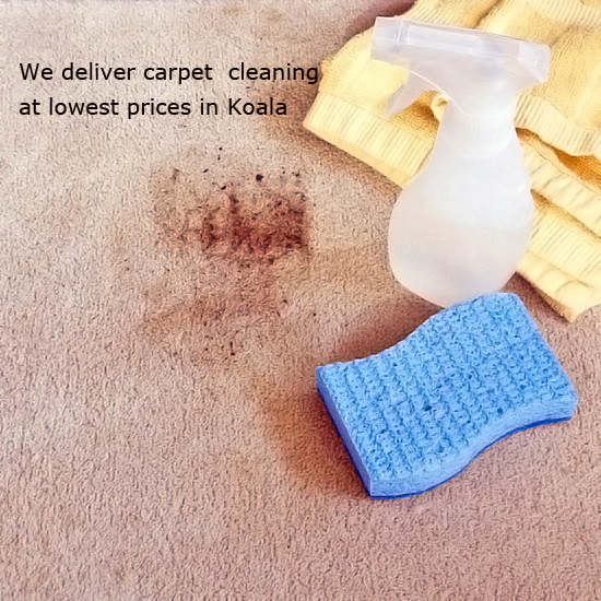 Carpet Mildew Removal Woongoolba