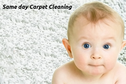 Affordable Carpet Cleaning Benarkin North