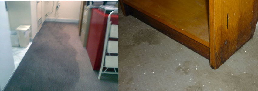Flood Water Damage Restoration Greenmount