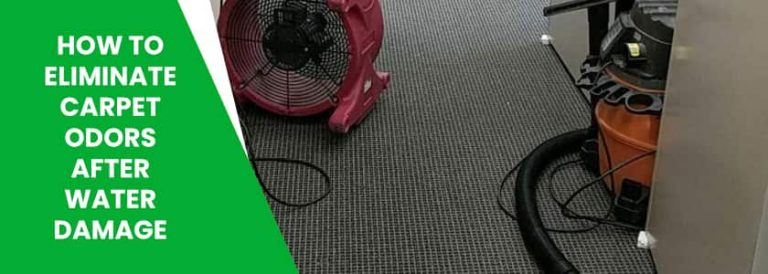 How to Eliminate Carpet Odors After Water Damage